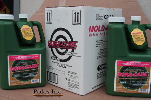 Bora-Care with Mold-Care (1 Gallon Jug)
